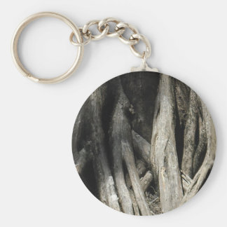 Tangled Cypress Keychain