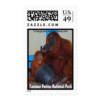 Tanjung Puting National Park Orangutans Stamp