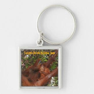 Tanjung Puting National Park Wild Orangutans Keychain