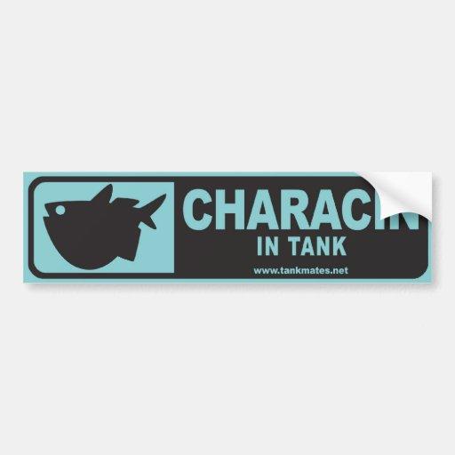 Tank Mates bumper sticker series 1-Characin B