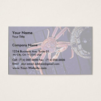 Tanner Crab Business Card