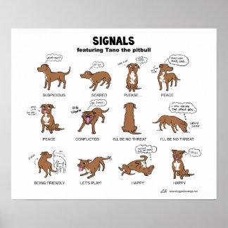 TANO Signals Print
