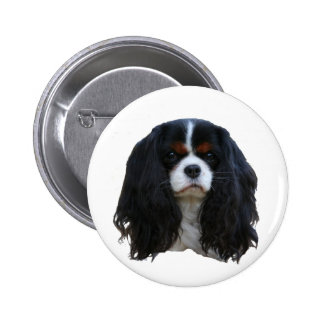 Tansy 2 Inch Round Button