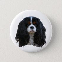 Tansy Button