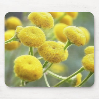 Tansy Flowers Mouse Pad