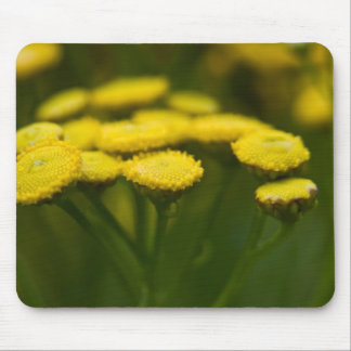Tansy Mouse Pad