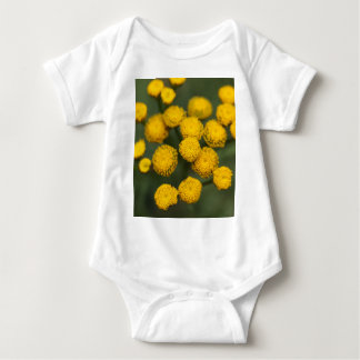 Tansy Tanacetum vulgare Baby Bodysuit
