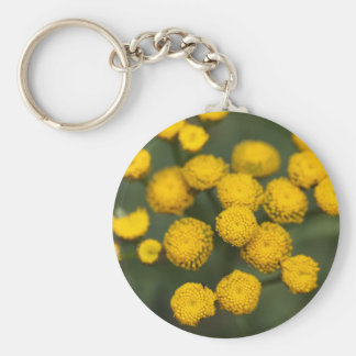 Tansy Tanacetum vulgare Basic Round Button Keychain