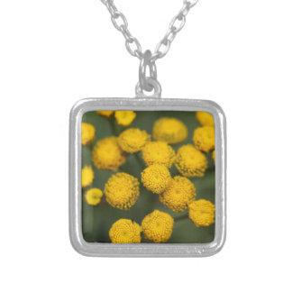 Tansy Tanacetum vulgare Square Pendant Necklace