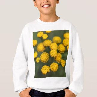 Tansy Tanacetum vulgare Sweatshirt