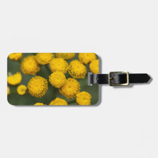 Tansy Tanacetum vulgare Tag For Luggage