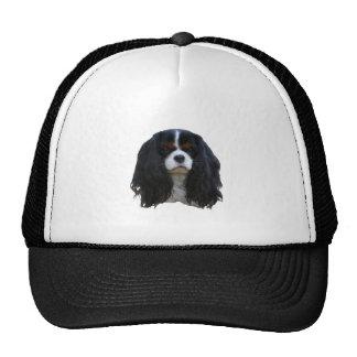 Tansy Trucker Hat