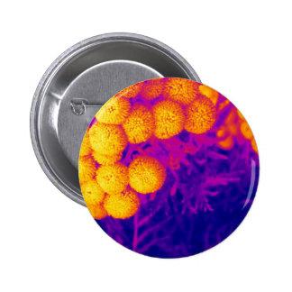 Tansy vibrante pin