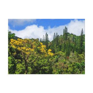 Tantalus, Honolulu, Hawaii Lienzo Envuelto Para Galerías