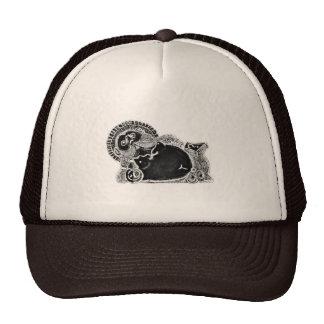 tanukizum2 trucker hat