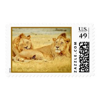 tanzania-280340 WILD BIG CATS LIONS  tanzania sere Postage