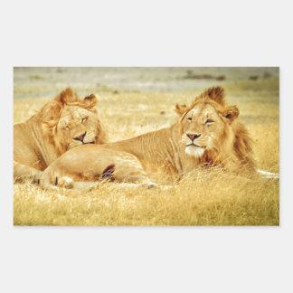 tanzania-280340 WILD BIG CATS LIONS  tanzania sere Rectangle Sticker