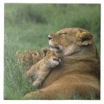 Tanzania, cráter de Ngorongoro. Madre africana del Azulejo Cuadrado Grande