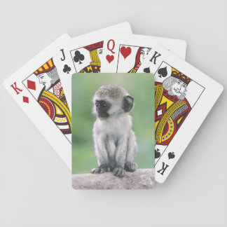 Tanzania, Ngorogoro Crater. Close-up of wild Playing Cards