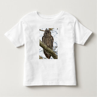 Tanzania, Ngorongoro Conservation Area south T Shirt