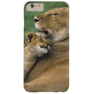 Tanzania, Ngorongoro Crater. African lion mother Barely There iPhone 6 Plus Case