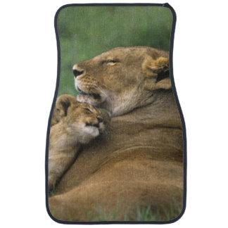 Tanzania, Ngorongoro Crater. African lion mother Car Mat