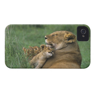 Tanzania, Ngorongoro Crater. African lion mother iPhone 4 Case