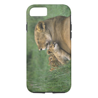 Tanzania, Ngorongoro Crater. African lion mother iPhone 8/7 Case