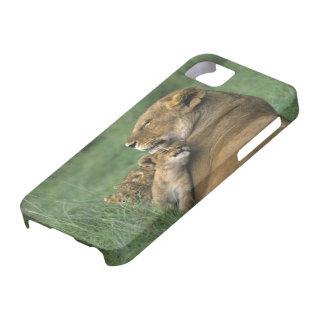 Tanzania, Ngorongoro Crater. African lion mother iPhone SE/5/5s Case