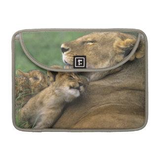 Tanzania, Ngorongoro Crater. African lion mother MacBook Pro Sleeve