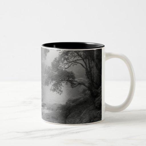 TAO-Te-Ching No.5 /Mug Taza Dos Tonos