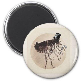 Tap dancing Flea magnet