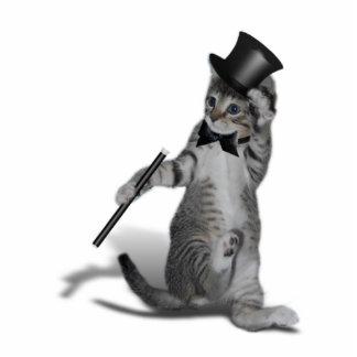 Tap Dancing Kitten Photo Sculpture