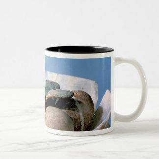 Tapa de un tarro del alabastro adornado con un taza de dos tonos