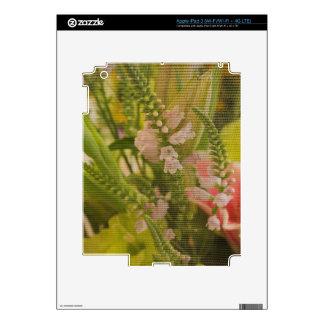 Tapicería Pegatinas Skins Para iPad 3
