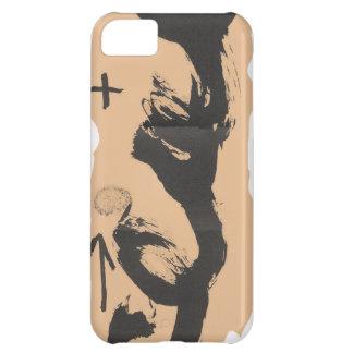 TAPIES iPhone 5C CASES