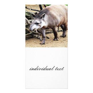 Tapir 1115P Card