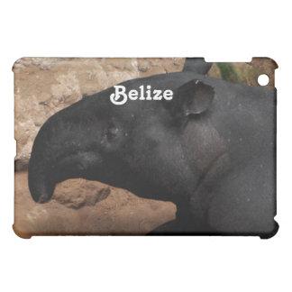 Tapir de Belice Baird