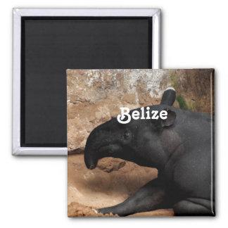 Tapir de Belice Baird Imán De Nevera