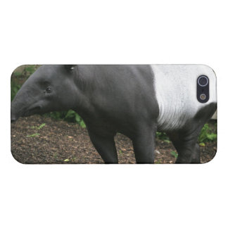 Tapir iPhone SE/5/5s Cover