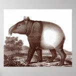 Tapir malasio en un paisaje de la impresión antigu impresiones