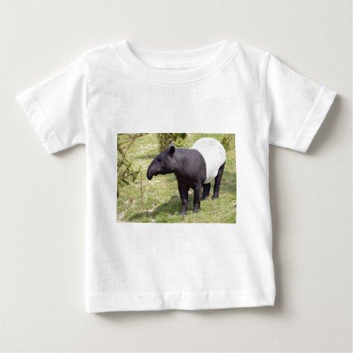 Tapir malayo en hierba playera de bebé