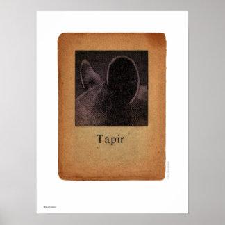 Tapir Poster