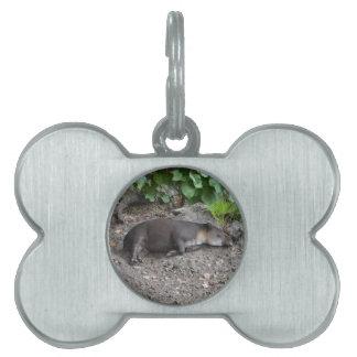 tapir que duerme en la arena placa de nombre de mascota