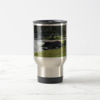 Tapir que toma una inmersión en el río tazas de café
