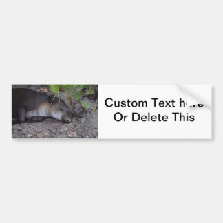 tapir sound asleep animal bumper sticker