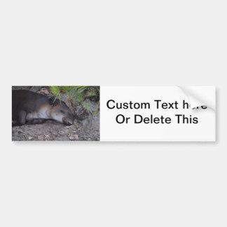 tapir sound asleep animal bumper sticker