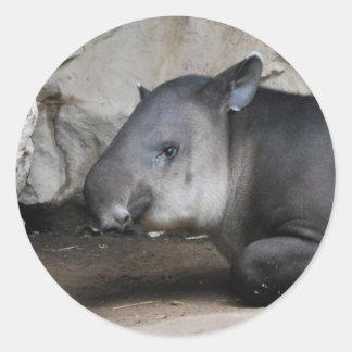 Tapir Stickers