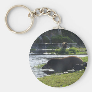 Tapir Taking A Dip In The River Keychain