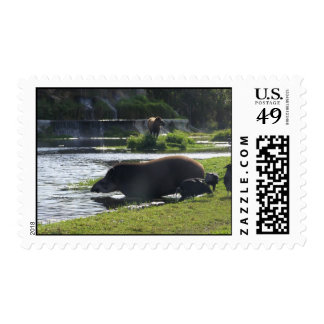 Tapir Taking A Dip In The River Postage Stamp